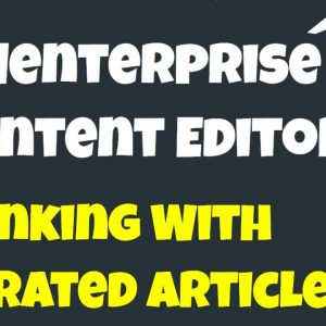 Menterprise Content Editor - Ranking With Curated Articles